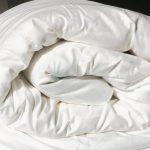 Silk Duvet, silk duvet inner
